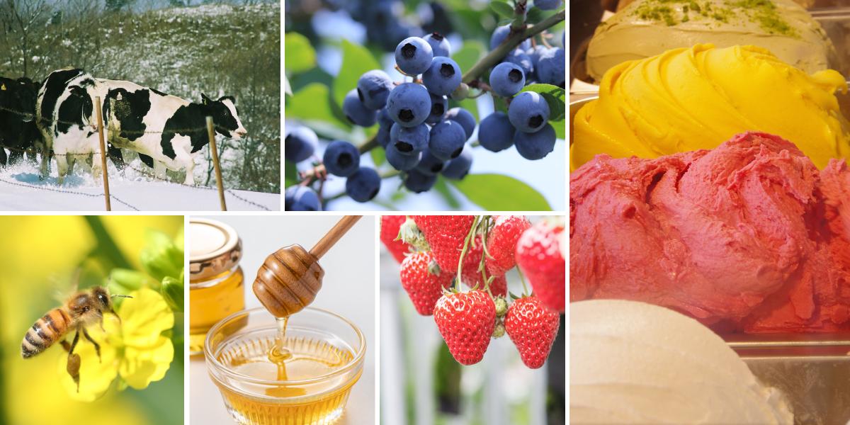 県内の農産物を使い、地産地消の取り組みを推進